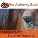 The Alchemy Stud